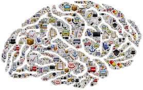mozek-280